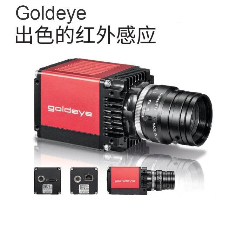 Goldeye G-033 TECless