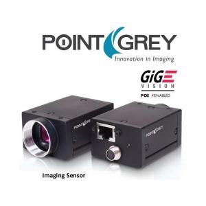 GS3-PGE-50S5M